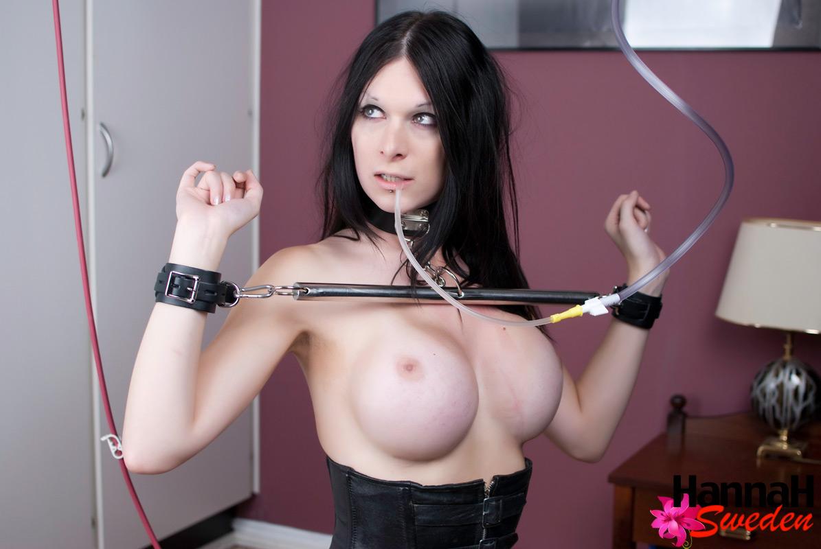 shemale bondage free video